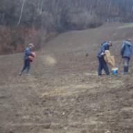 12. Radovi na sadnji trave na fazi III flotacijskog odlagališta 2012. god.