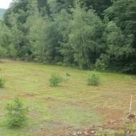 23. Izgled zemljišta faze II flotacijskog odlagališta poslije tretiranja zemljišta terakotenom 2014. god.