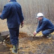8. Radovi na sadnji drvenastog bilja na fazi II flotacijskog odlagališta 2011. god.