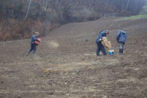 Priprema, gnojenje zemlјišta i sadnja odgovarajućih vrsta trave
