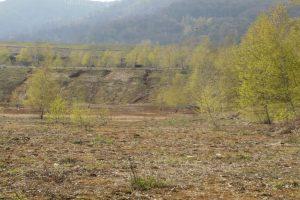 Djelimično rekultivisano zemlјište faze II jalovinskog odlagališta