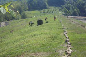 Pravlјenje kamenih barikada na padinama odlagališta faze III