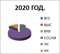 2020. godina